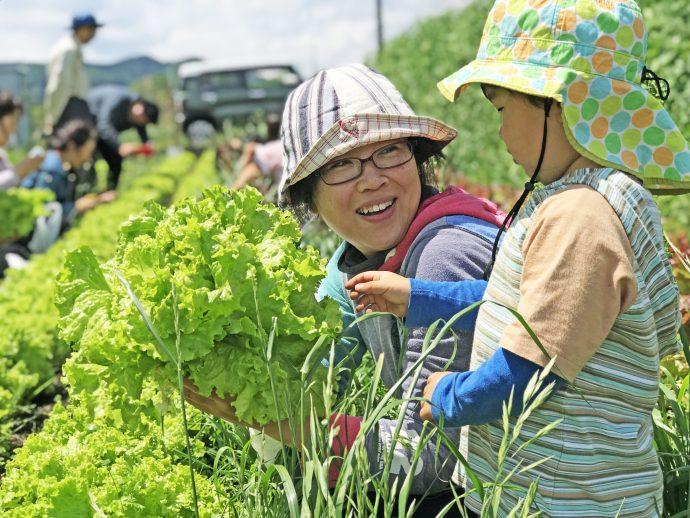 愛川町 農家 趣味 いきがい 自然農 畑 田んぼ 無償 借りる