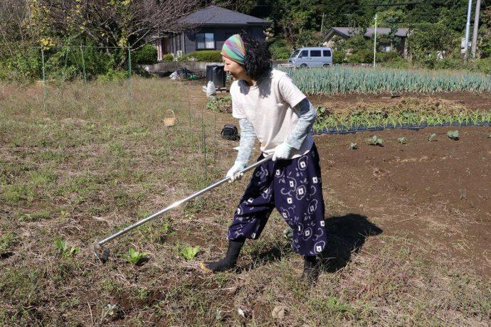 愛川町 ポケットに愛川 準農家 趣味 いきがい 農業 戸崎さん ファッション 服