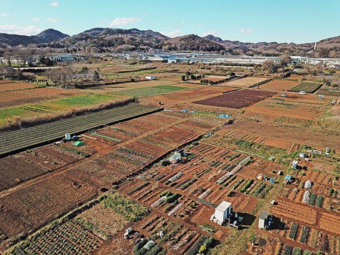 愛川町 ポケットに愛川 あいかわ準農家制度 角田・峰の原に広がる広大な農地