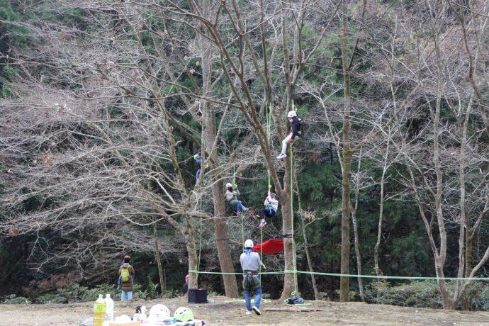 ツリーロープクライミング クライミング 愛川町 八菅山