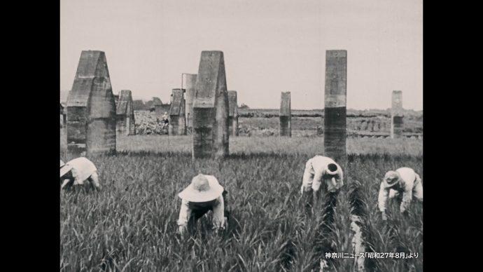 愛川町 農地開拓のニュース映像